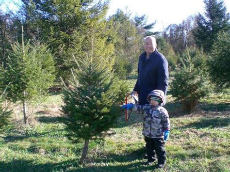where to cut your own christmas tree near monroe monroe