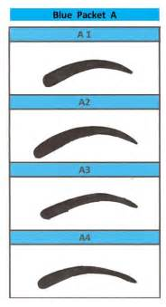 eyebrow templates printable 17 best ideas about eyebrow stencil on