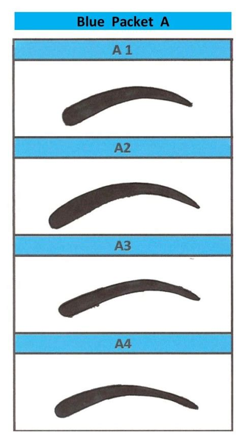 printable eyebrow stencils actual size eyebrows