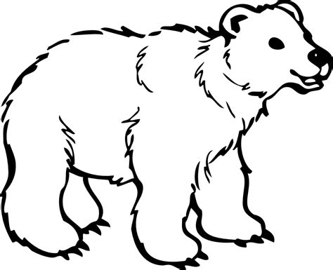 Bear Coloring Pages Clipart Best Clip Coloring Pages