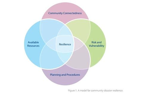 circle building resilience in business and from the jagged edges of ptsd books diagram of makeup of resilience 183 lake union laboratory lulab