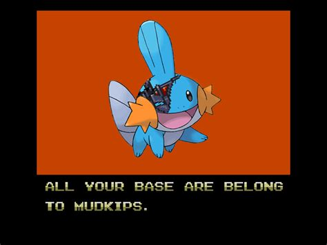 image 64706 i herd u like mudkips know your meme