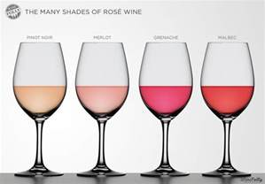 zinfandel color different shades of wine wine folly