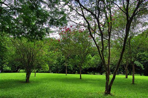 imagenes zonas verdes eco progress 193 reas verdes sin 244 nimo de qualidade de vida