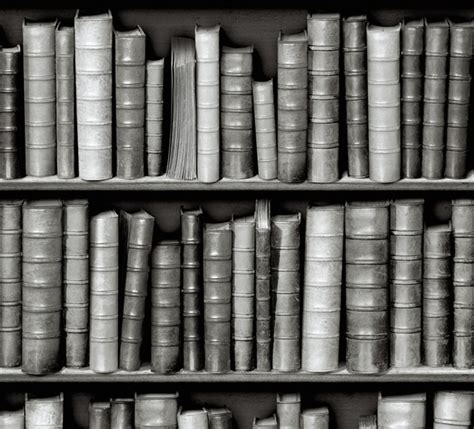 vintage black and white library wallpaper eclectic
