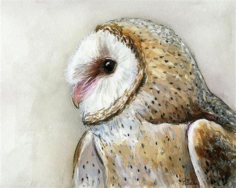 water color owl barn owl watercolor painting by olga shvartsur