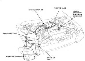 1999 honda engine diagram 1999 free engine image for