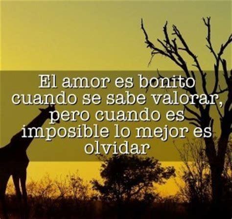 imagenes de de un amor imposible 64 imagenes para compartir de un amor imposible frases