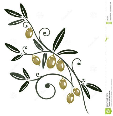 la cuisine d olivier branche d olivier photographie stock libre de droits