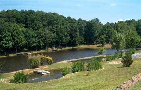 large backyard pond 1000 ideas about pond landscaping on pinterest rock