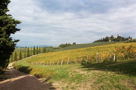 chianti wine trails florence  siena walking holiday