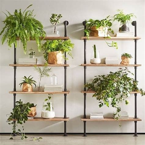 diy indoor plant wall projects    living