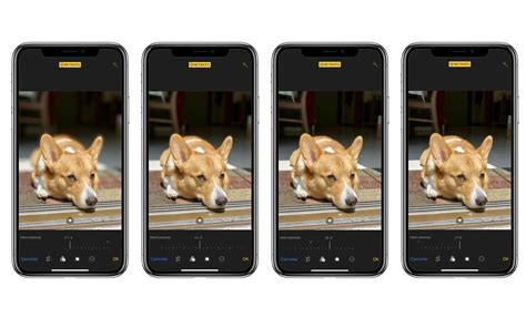 iphone xs max analisis comparativa iphone xs iphone xr cnet en espanol