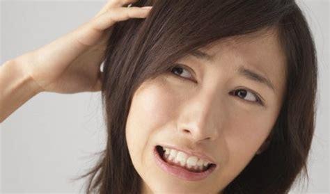 obat kutu rambut infojelita cara menghilangkan kutu rambut