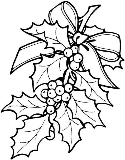 free christmas flower color coloring pages