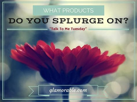 Do You Splurge On by What Products Do You Splurge On Glamorable