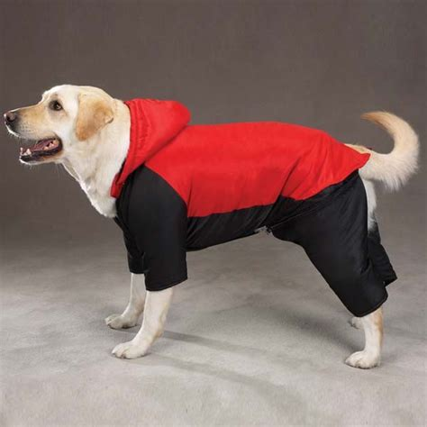 big dogs clothing big clothes kuka s world designer clothes and luxury accessories for pets