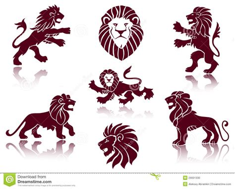 lion illustrations stock vector illustration of