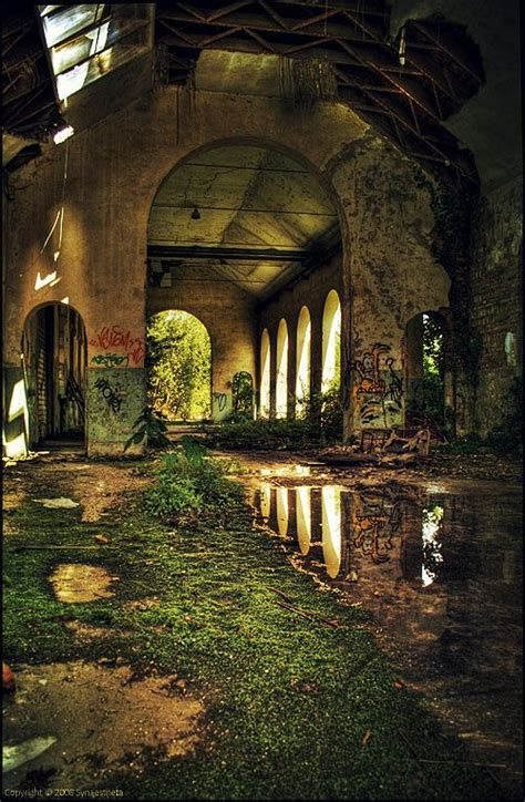 abondoned places ruins dilapidated decay abandoned nature always wins pinterest beautiful pictures of