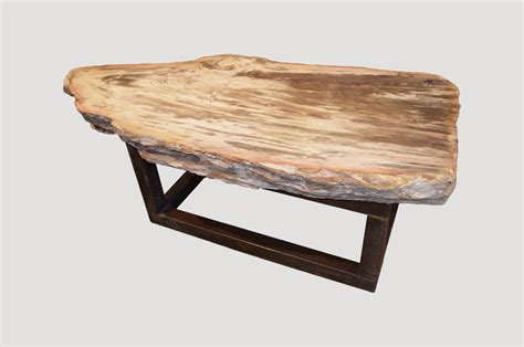 petrified wood coffee table single slab petrified wood coffee table pwsl andrianna