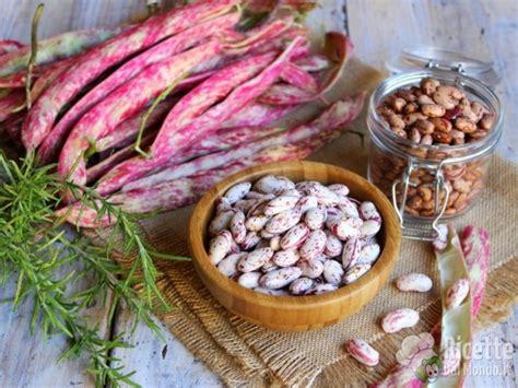 cucinare i fagioli freschi come pulire e cuocere i fagioli borlotti freschi