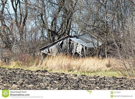 abandoned shed in the woods stock photo image 61775379