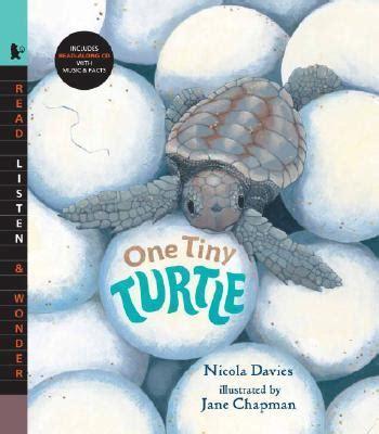 One Tiny Turtle Read And one tiny turtle nicola davies 9780763638344