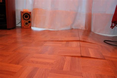 Which Floor Are You On - why is my laminate floor lifting top tips discount