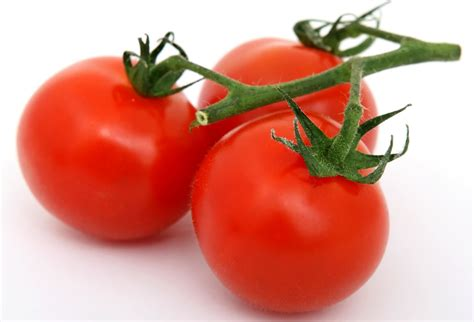 Plants Low Light by Free Picture Tomato Food Vegetable Nutrition