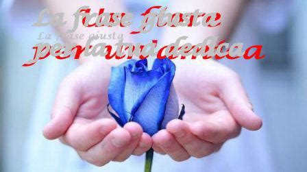 fiori per un amica un fiore per un amica la frase giusta