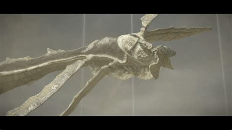serpente volante shadow of the colossus come sconfiggere il tredicesimo