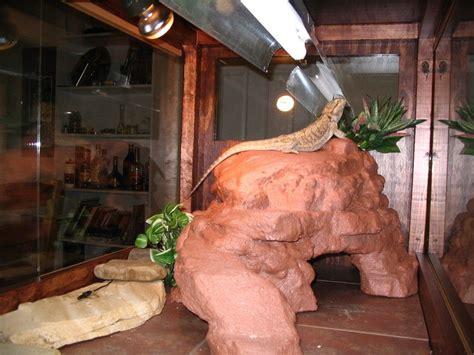 diy cave diy reptile platform cave petdiys