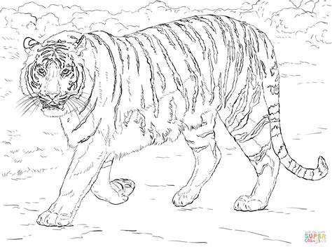 coloring page bengal tiger image gallery tiger coloring