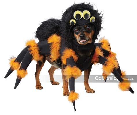 puppy spider spider pup costume california costumes