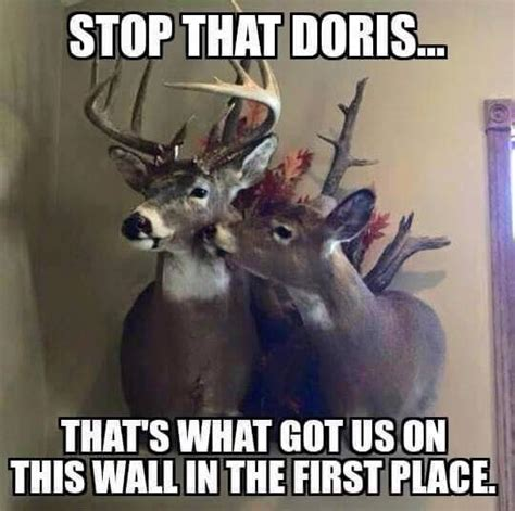 Deer Hunting Memes - deer hunting memes to make you laugh cry and cringe