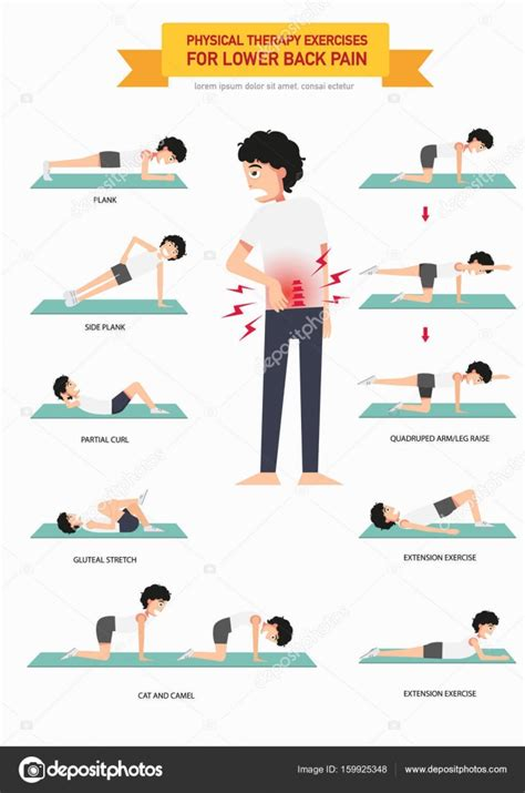 html layout exercises physical therapy exercises for lower back pain infographic