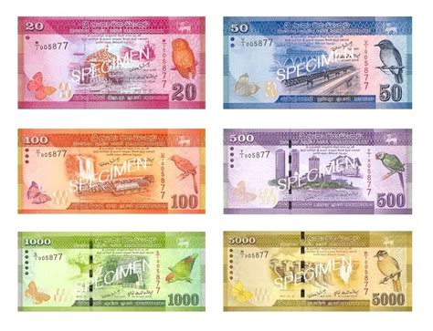 currency converter old to new 17 best images about money banknotes currency fiat paper