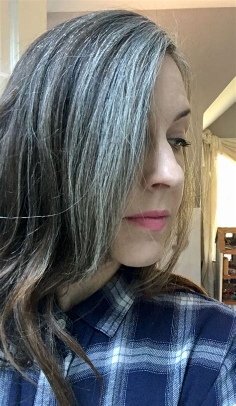 salt and pepper hair with highlights 1000 images about silver sisters on pinterest silver