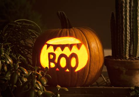 boo template pumpkin and carve o lantern etsy