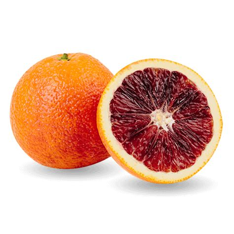 The Blood Orange moro blood oranges lil snappers