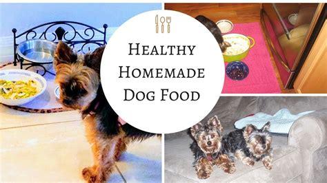 homemade dog shoo for good smell how to make homemade dog food so easy and so good for