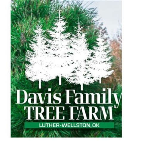 davis family trees christmasdftf twitter