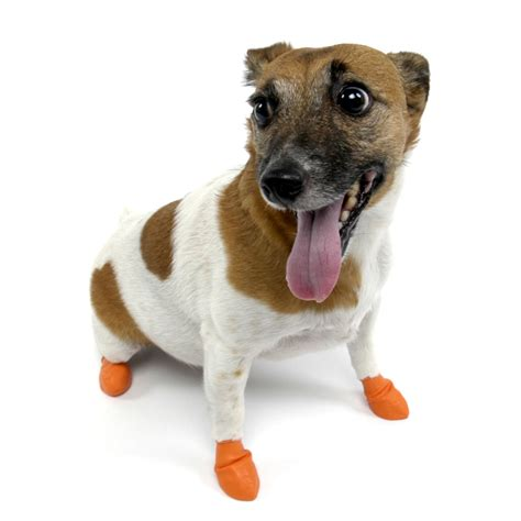 light up dog shoes pawz natural rubber dog boots the green head