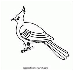 bird outline drawing kids coloring