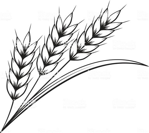clipart graphics wheat clipart ourclipart