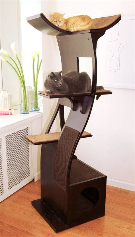 biggest house cat you can buy best cat tree without carpet ideas cat tree plans cat furniture and cat tree
