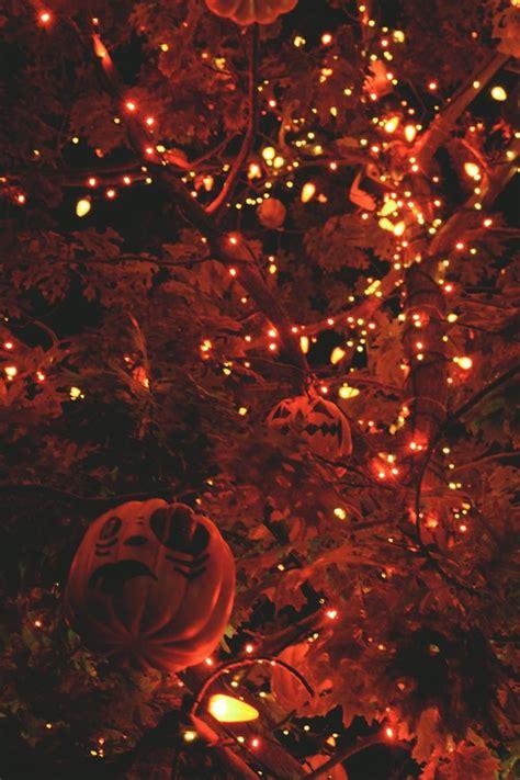 Orange Outdoor Lights Use Bundles Of Lights For A Magical Outdoor