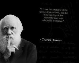 charles darwin quotes on religion quotesgram