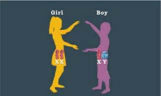 Having a boy or girl mine says it s a boy chinese pregnancy 50