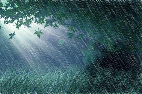 imagenes tiernas de lluvia 17 im 225 genes con movimiento de lluvia